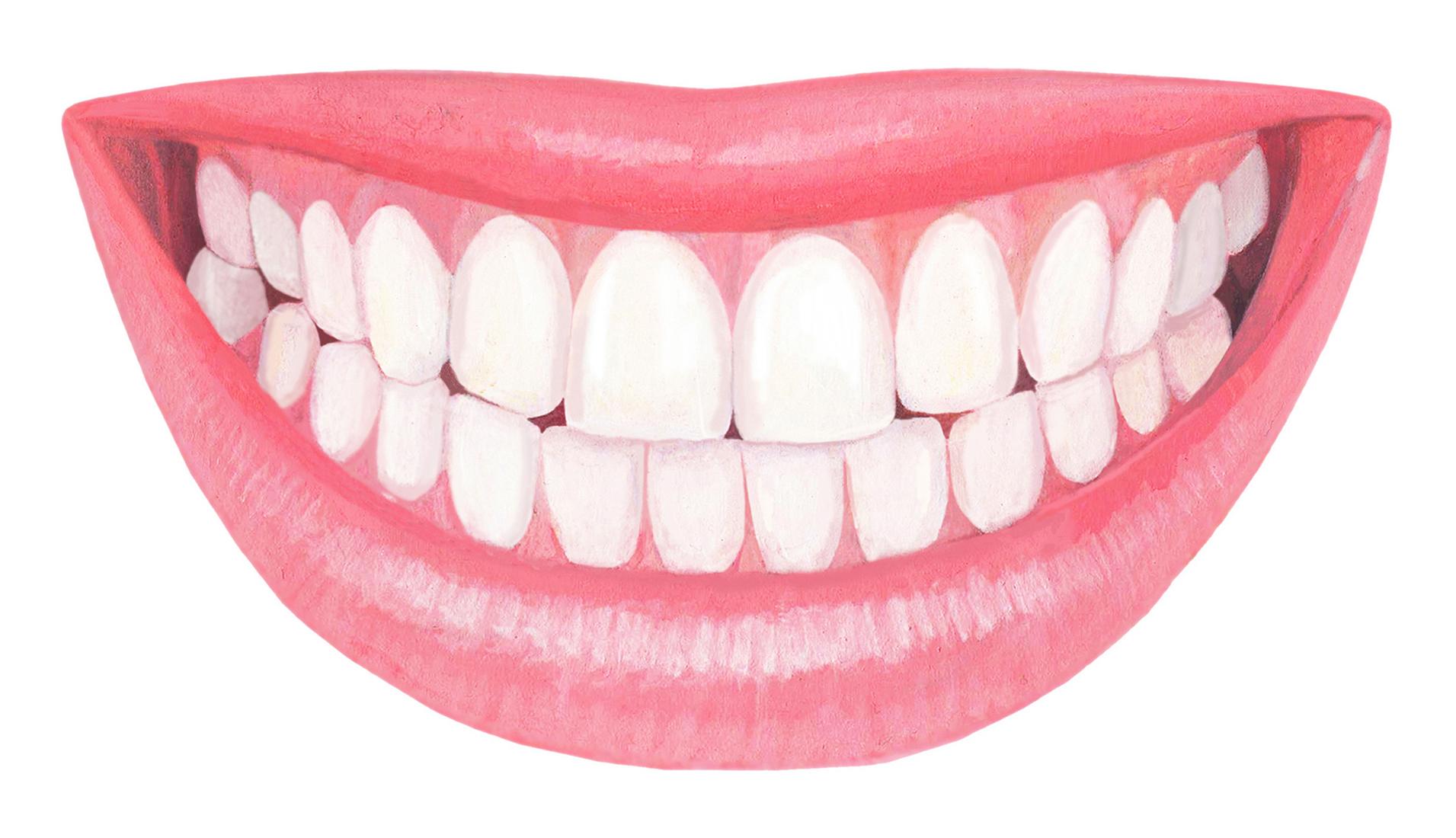きれいな歯並びのリアルなイラスト