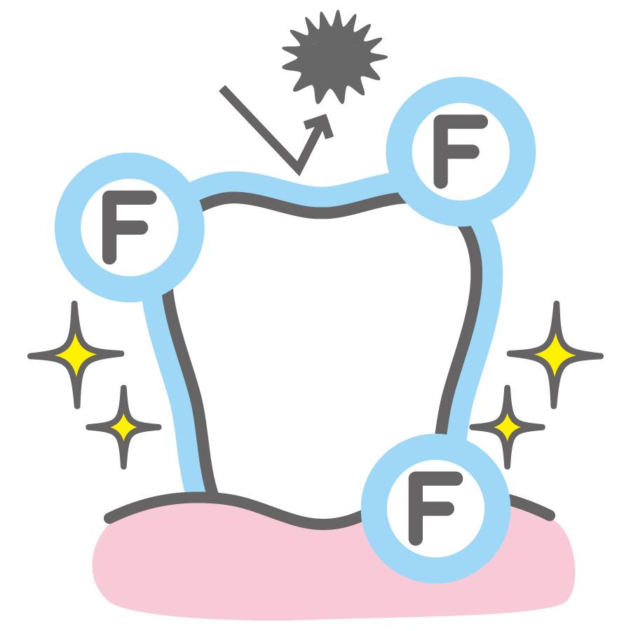 フッ素でコーティングすると脱灰と再石灰化を助ける