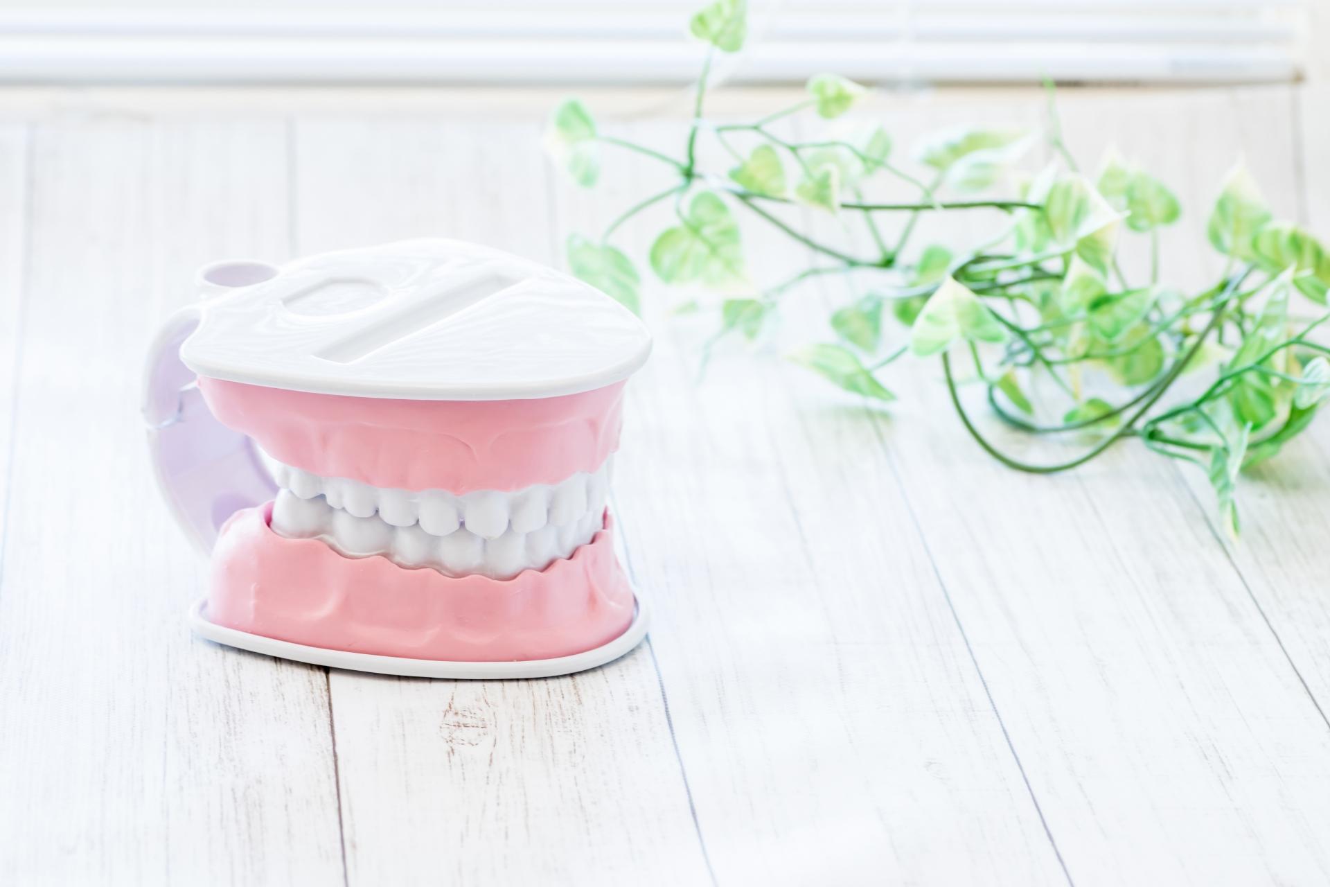 いつまでも健康な歯でいたいものです